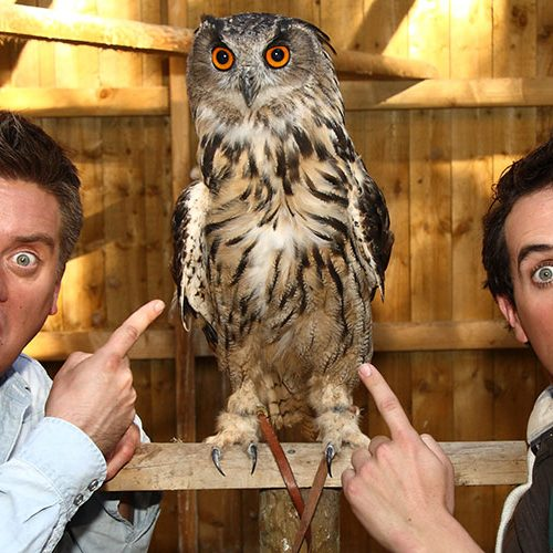 Dick and Dom Go Wild <br> Series 1 & 2