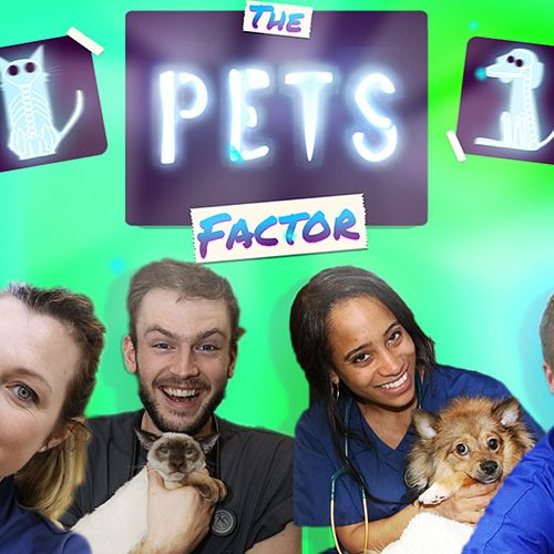 The Pets Factor Series 4