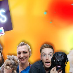 The Pets Factor Series 6